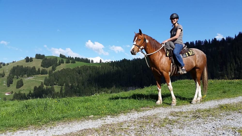 Pferde_Ausritt