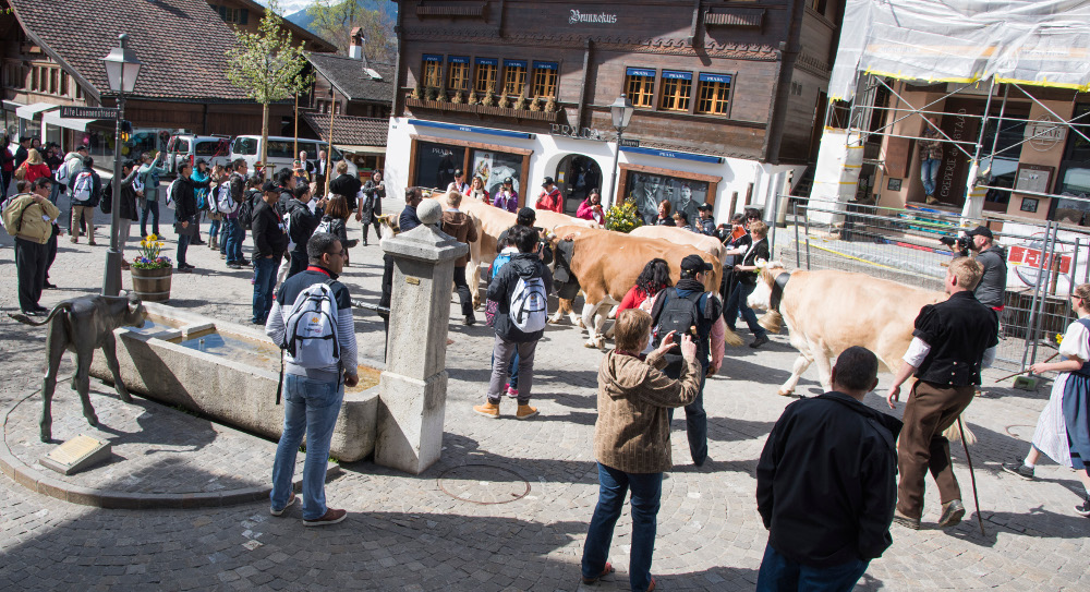 Zügle_Gstaad